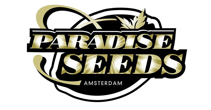 5 лучших сортов от Paradise seeds