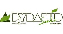 Pyramid Seeds сидбанк