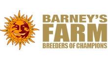 Barneys-Farm.jpg
