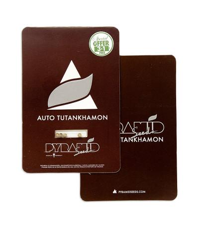 Auto Tutankhamon fem (Pyramid Seeds) семена конопли