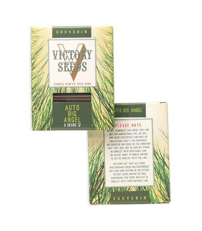 Auto Big Angel fem (Victory Seeds) семена конопли