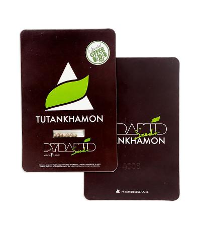 Tutankhamon fem (Pyramid Seeds) семена конопли